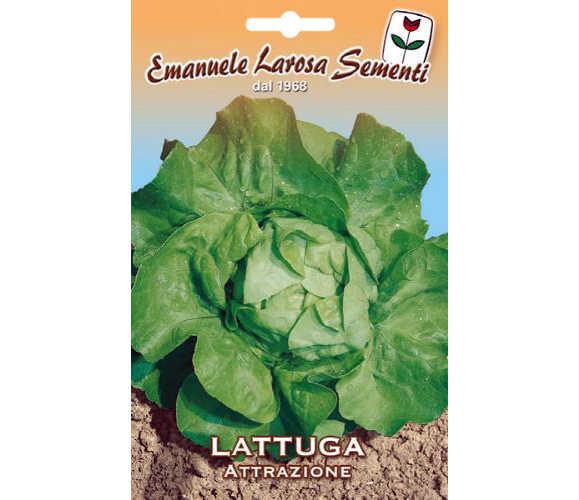 Salade d hiver variete trendy plantation de laitue en automne with salade d hiver variete - Salade d hiver variete ...